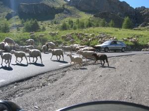 Liikennettä tiellä