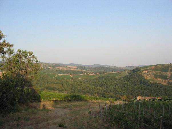 Maisema ravintolan pöydästä. Viinit tulivat noilta viljelmiltä.