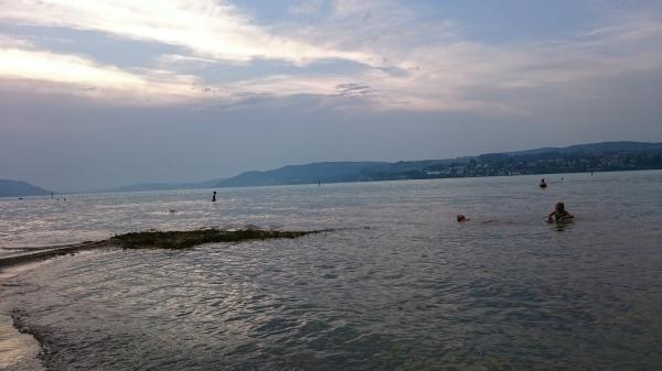 Leirintäalueen rantaa Bodenseellä