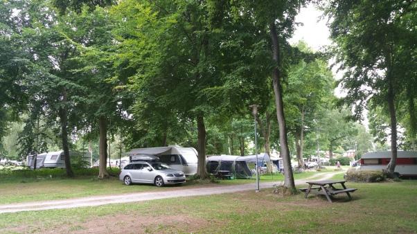 Norje Böke Camping - huomaa meidän paikan riittävä puiden määrä