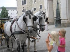 Salzburg - hevosajelulta