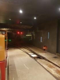 Slovenia - Postojnska Jama - ensimmäiset 5 km mentiin junalla