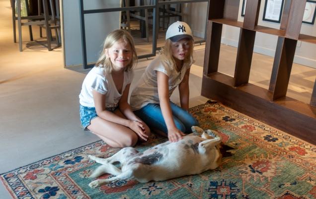 Ca' del Baio - toinen tilan koirista tyttöjen rapsutettavana