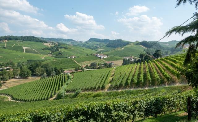 Piemonten maisemia